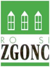 rsi_logo.jpg